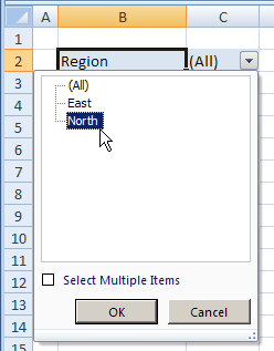select item in report filter